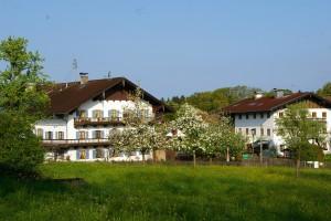 Dorfanger in Hirnsberg