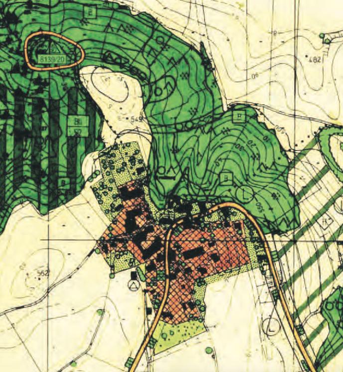 Flächennutzungsplan - Ausschnitt Hirnsberg