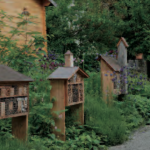 Hirnsberg-Gartenbauverein-Insektenhotels