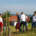 Parternstadt Volovec - gespendete Kirsche