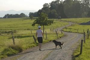 Wandern in und um Hirnsberg